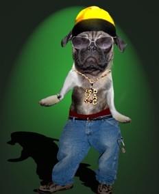 Ruff the Rapper